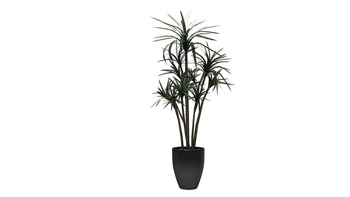 【TVS-2000A 3D装饰物件】植物_8