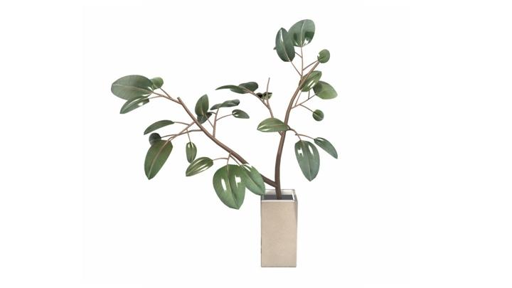 【TVS-2000A 3D装饰物件】植物_9